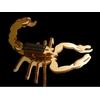 maquette-en-bois-scorpion-solaire
