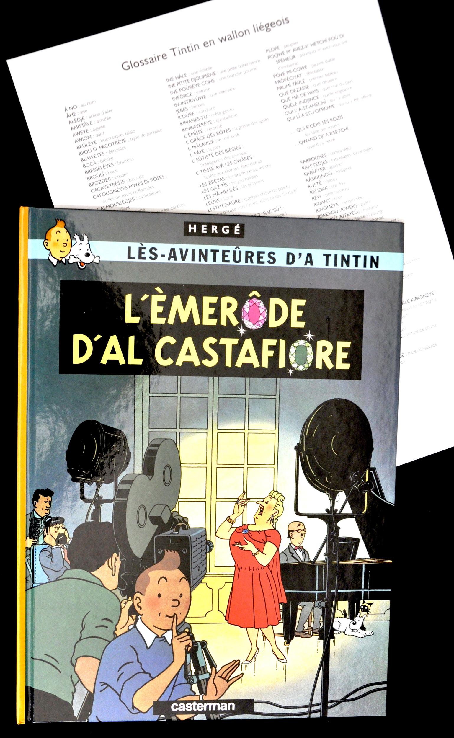 wallon liégeois-Tintin+cachet n°-30€-épuisé