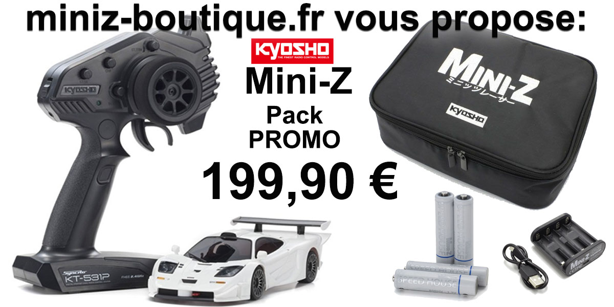 Pack Mc Laren F1 GTR + Chargeur + Accu 800mAh + Housse de rangement, PACKGTR