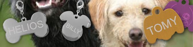 medaille-a-graver-pour-animaux-a-partir-de-1-90euro