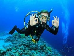 Plongee-sous-marine-a-la-recherche-de-Nemo_width620