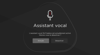 assistant-vocal-freebox-delta