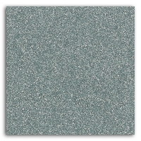 Glitter thermocollant - Argent
