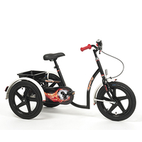 VERMEIREN - Tricycle enfant 2215 Sporty