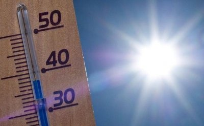 PHOTO CANICULE