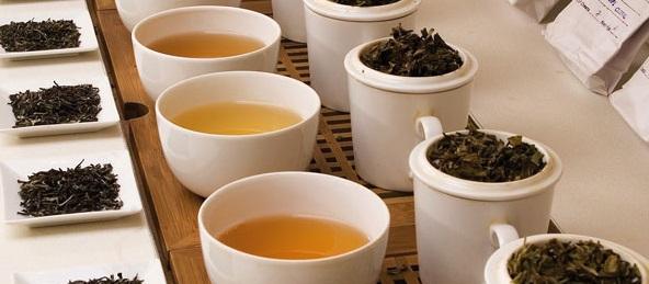 Ateliers thématiques autour du thé
