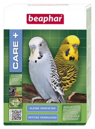 beapher CARE+ petite perruche