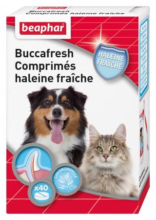 Buccafresh, comprimés haleine fraîche