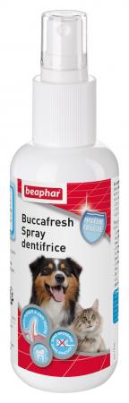 Buccafresh - spray dentifrice