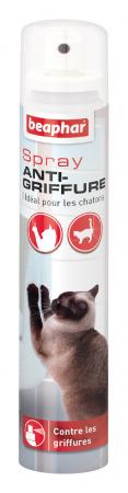 BEAPHER Spray anti-griffure