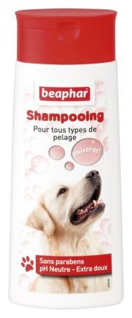 Shampooing Bulles - tous types de pelage