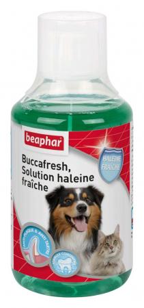Buccafresh - solution haleine fraiche