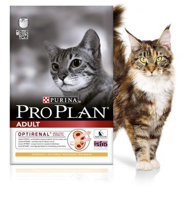 PURINA PROPLAN - CHAT ADULT POULET noszanimos