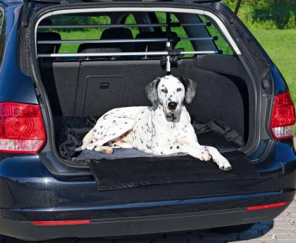 Trixie Lit pour coffre de voiture noszanimos