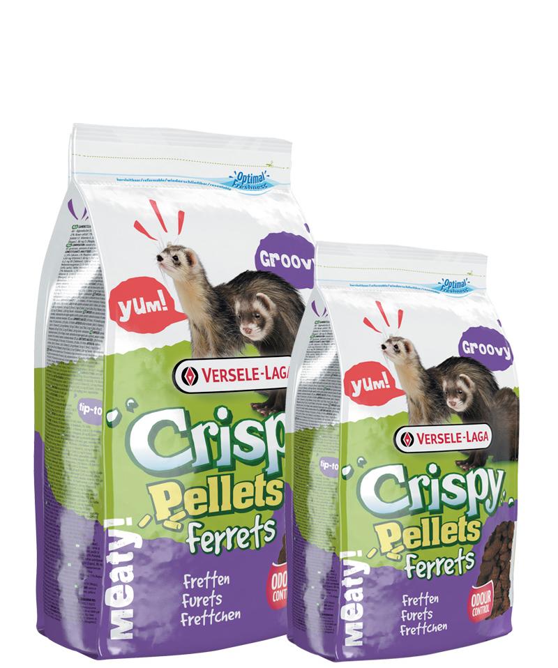 Crispy Furet