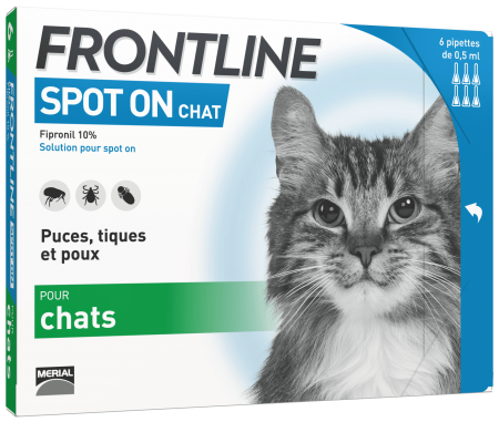 FRONTLINE Spot on chat noszanimos