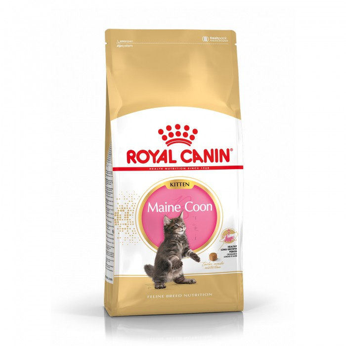 royal-canin-breed-nutrition-maine-coon-kitten noszanimos