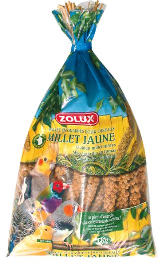 Zolux-Millet grappe jaune anjou
