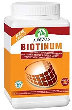 LABORATOIRES AUDEVARD  Biotinum 900G NosZanimos