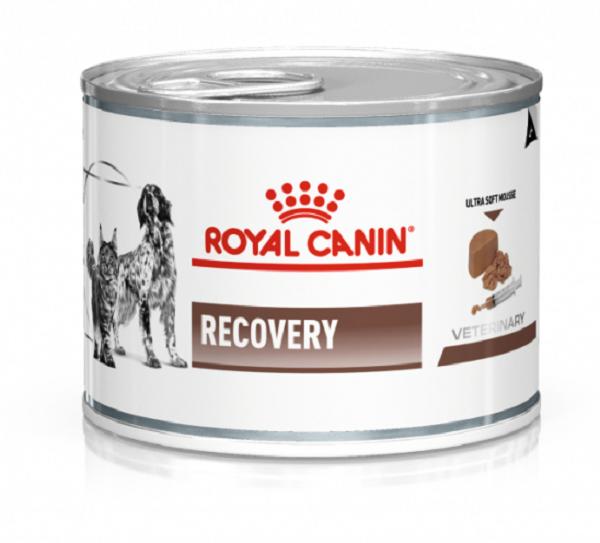 ROYAL CANIN Vet Dog Cat Recovery boite de  195g