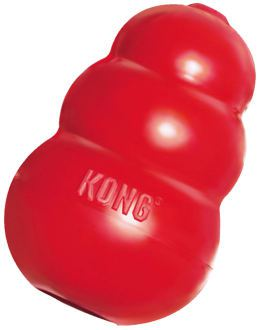 KONG small pour Rongeurs