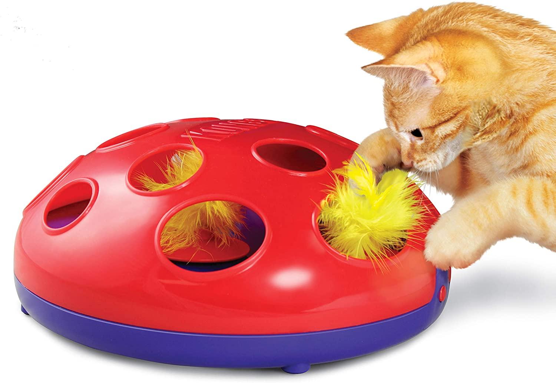KONG cat glide\' n seek