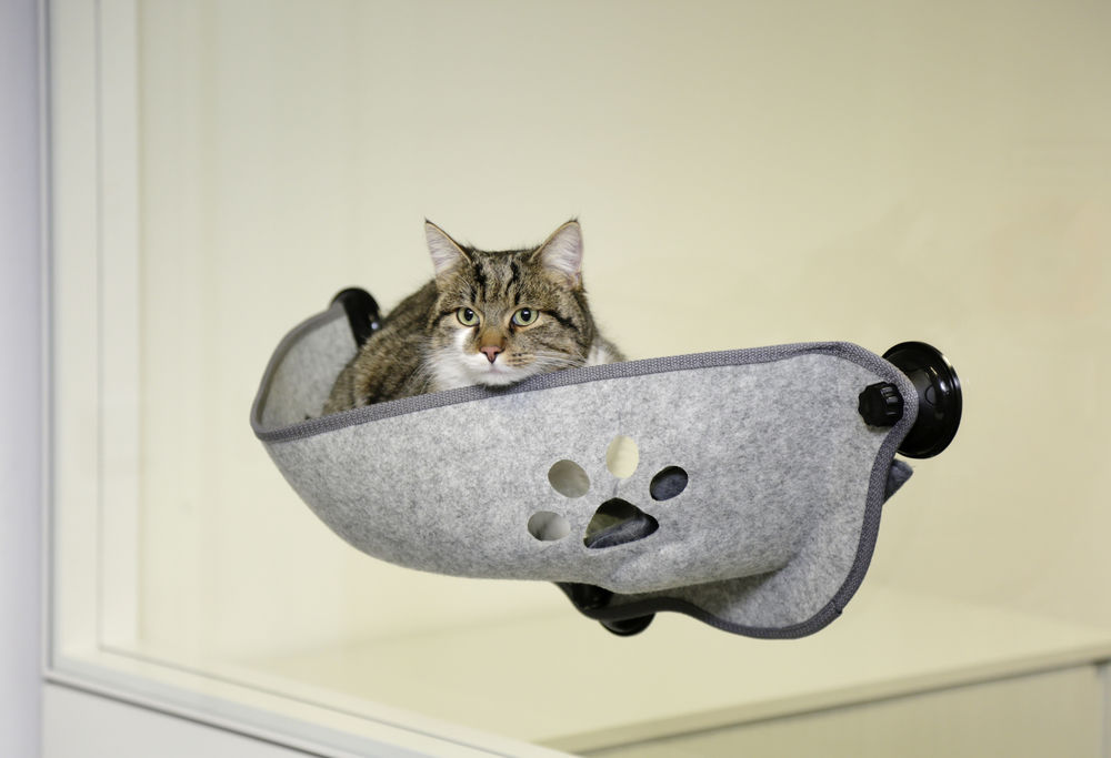 KERBL Hamac pour fenêtre pour chat Filzino NosZanimos 2