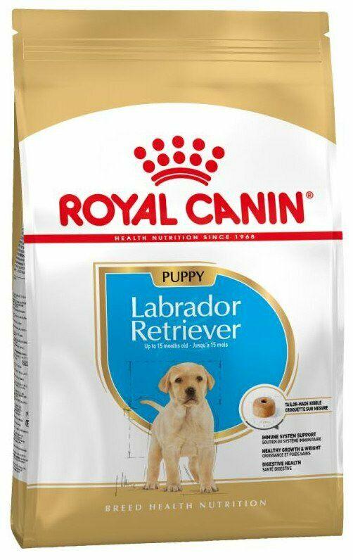 Royal Canin - Croquettes pour Chiot labrador retriever 12kg