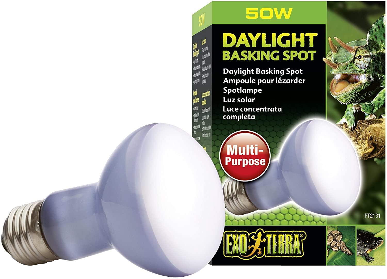 ExoTerra Lampe Daylight Basking Spot 50W pour Reptiles NosZanimos