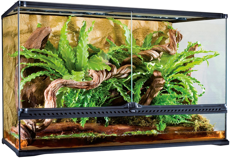 Exoterra terrarium Verre pour Reptiles et Amphibiens