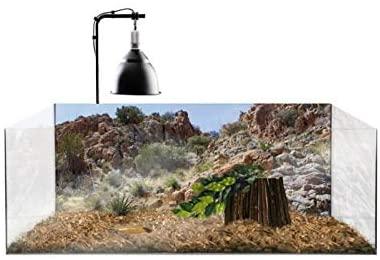 Exoterra - Kit Complet Terrarium pour Tortue terrestre. 79x39x27cm