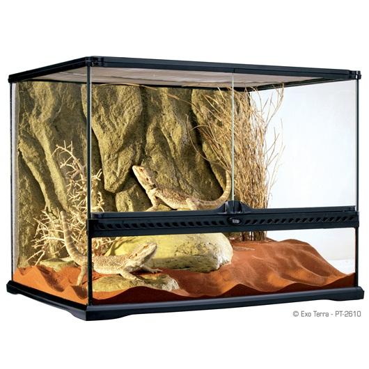 Exoterra - Terrarium en Verre pour Reptiles et Amphibiens
