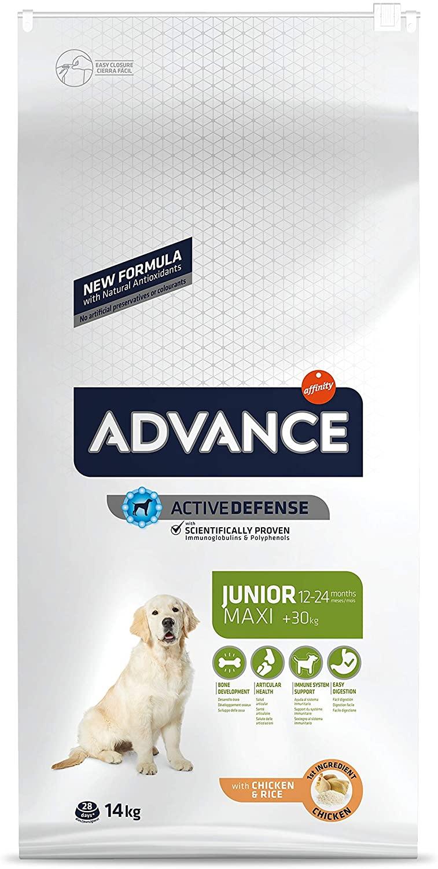 ADVANCE Croquette pour chien Maxi junior - Poulet 14 kg