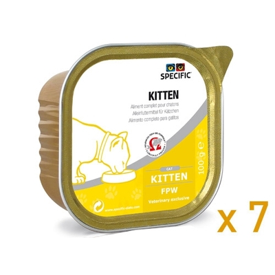 Specific - Kitten - FPW - Lot de 7 barquettes