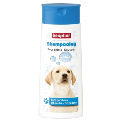 Shampooing Bulles - Chiot