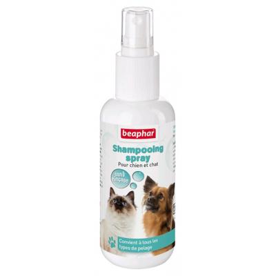 Shampooing spray Bulles - sans rinçage