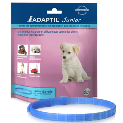 Collier Adaptil Junior