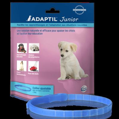 Collier Adaptil Junior