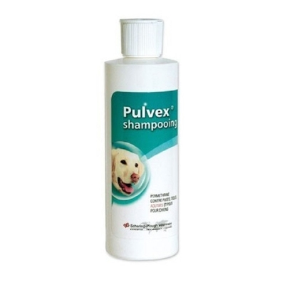 MSD - Pulvex - Shampooing Antiparasitaire