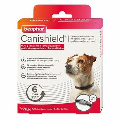 Beapher Canisheld  - Collier petit chien