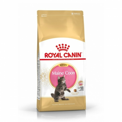Croquette ROYAL CANIN - Maine Coon Kitten /Chaton