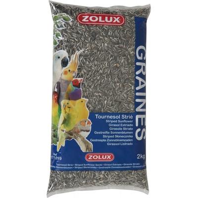 Zolux-Graines de Tournesol Strié