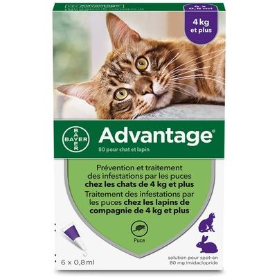 ADVANTAGE Anti-Puce pour chat - 4 kg et plus