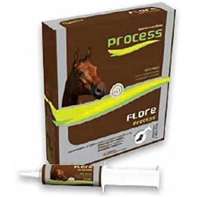 M.S.D FLORE PROCESS CHEVAL 5 Seringues