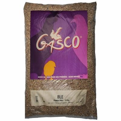 GASCO- Alimentation Basse Cour - Blé