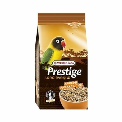 Prestige Loro Parque - African Perruche