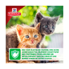 hills science plan -healthy-development-chaton-au-poulet 3 noszanimos