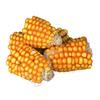 Trixie Morceaux d'épis de maïs noszanimos