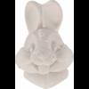 pierre-minerale-lapin-90-g-1