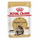 Royal Canin Maine Coon Adult en sauce pour chat